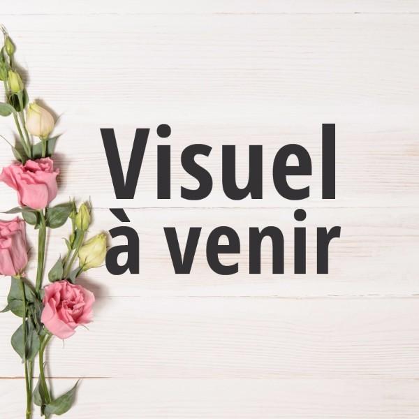 Fleuriste bapt me valenciennes bouquet composition de for Fleuriste proche
